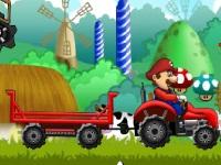 Mario_Mushroom21